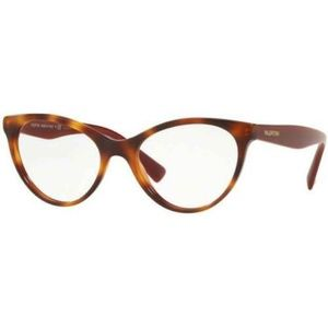 Valentino Cat-Eye Havana Bordeaux W/Demo Lens